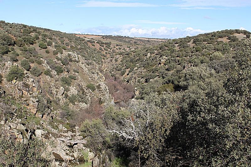 Cañón del río Pusa. En la orilla izquierda junto al río se encuentra una de las cuevas de Moraleda
