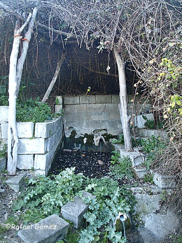 Fuente de la Mora en Segaverde, Lucillos. Al amanecer la noche de San Juan la mora se convierte en liebre