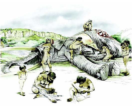 Recreación del despiece de un ElePhas Antiquus en el museíllo de los yacimientos arqueológicos de El Bercial