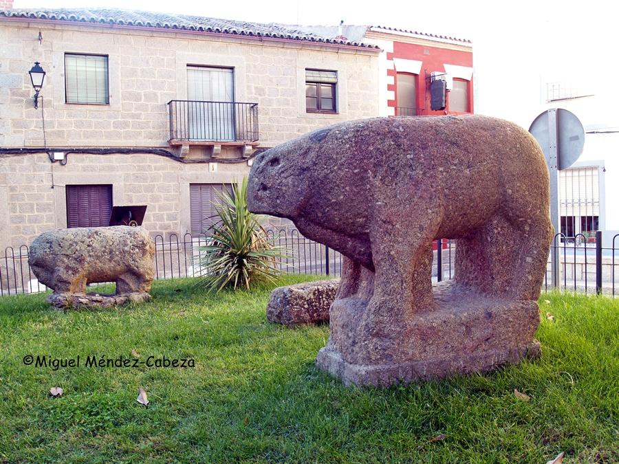 Verracos vettones de Castilla de Bayuela. El mayor cuentan que se bajó desde el cerro del Castillo por los quintos en los años 30