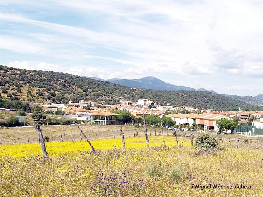 En las Relaciones del Cardenal Lorenzana se relacionan remedios para la fiebre en el pueblo de Pepino