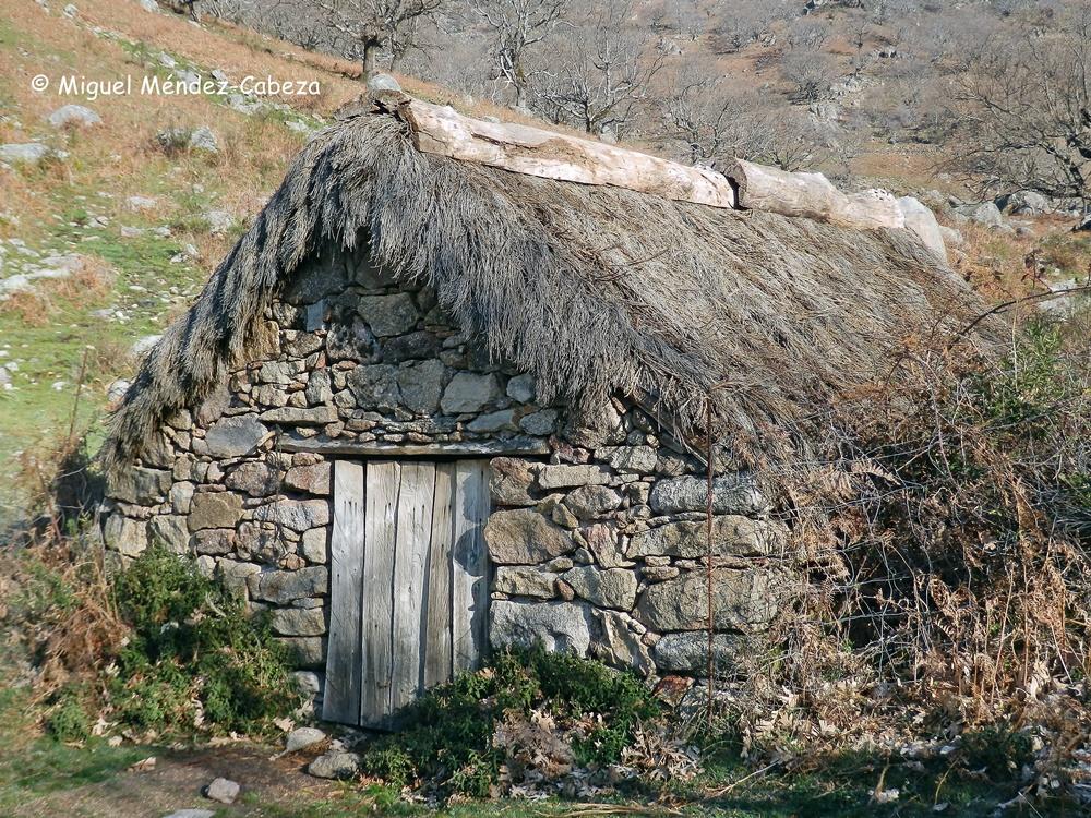 Casa con techumbre vegetal y remate en la cumbrera de medios troncos vaciados de roble