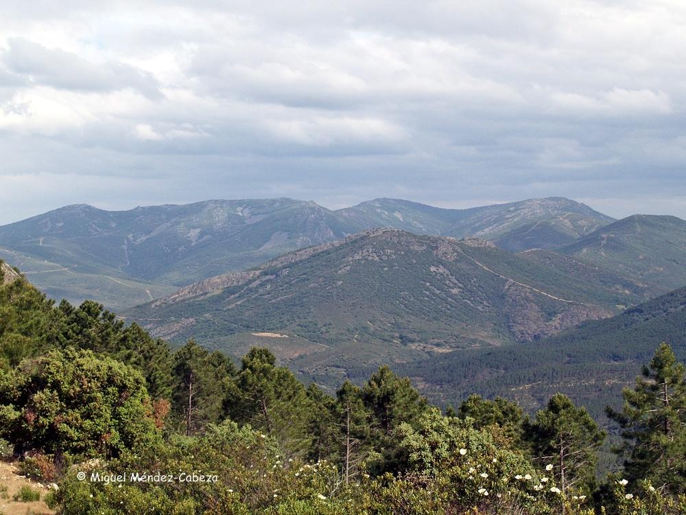 Cumbres de La Jara Alta desde el rico Ñañas