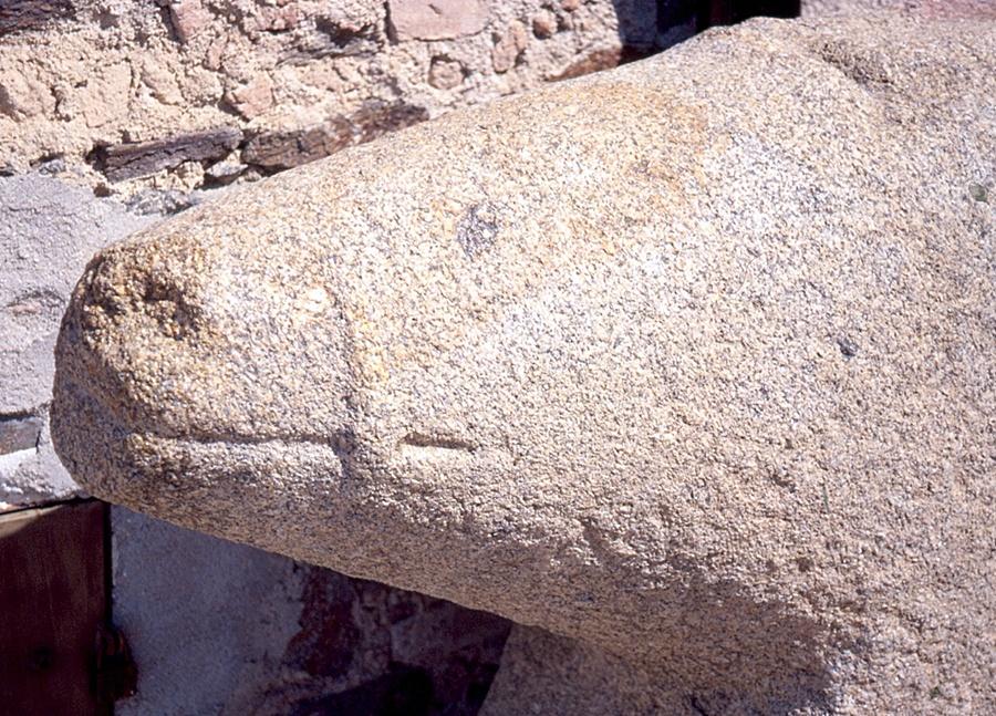 Detalle de la cabeza de un verraco de Torralba de Oropesa
