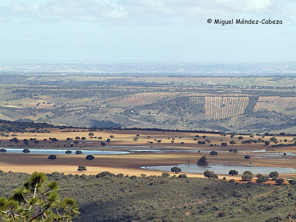 Lagunas de Paniagua y rañas del valle del Jébalo