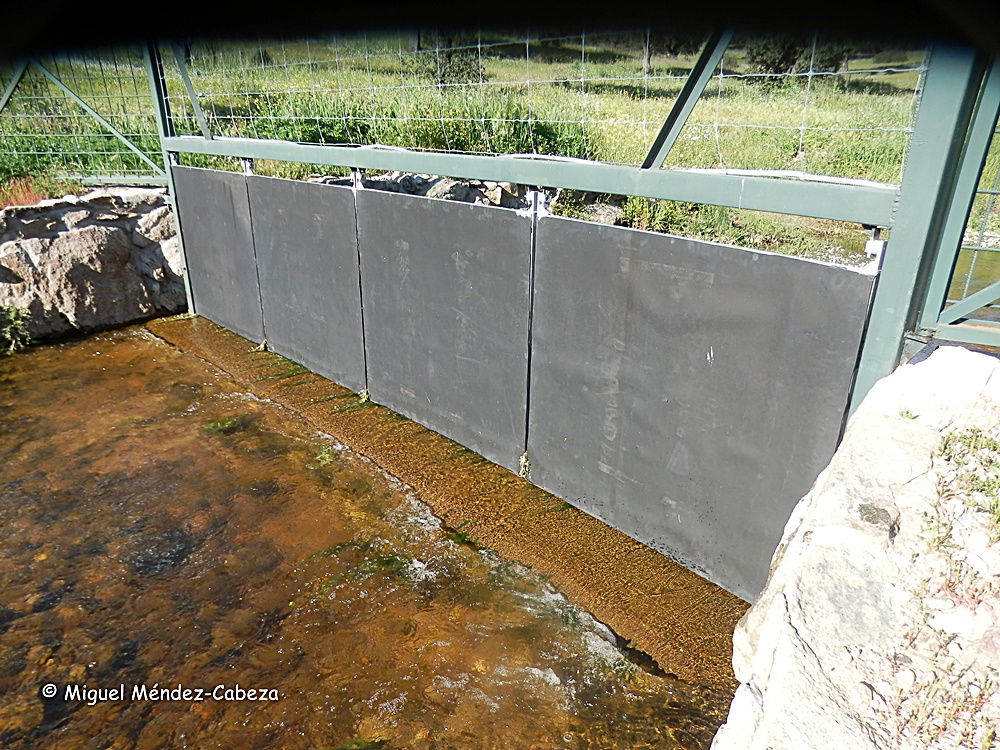 Cierre con puertas abatibles en el cauce del arroyo Nahinos en Velada