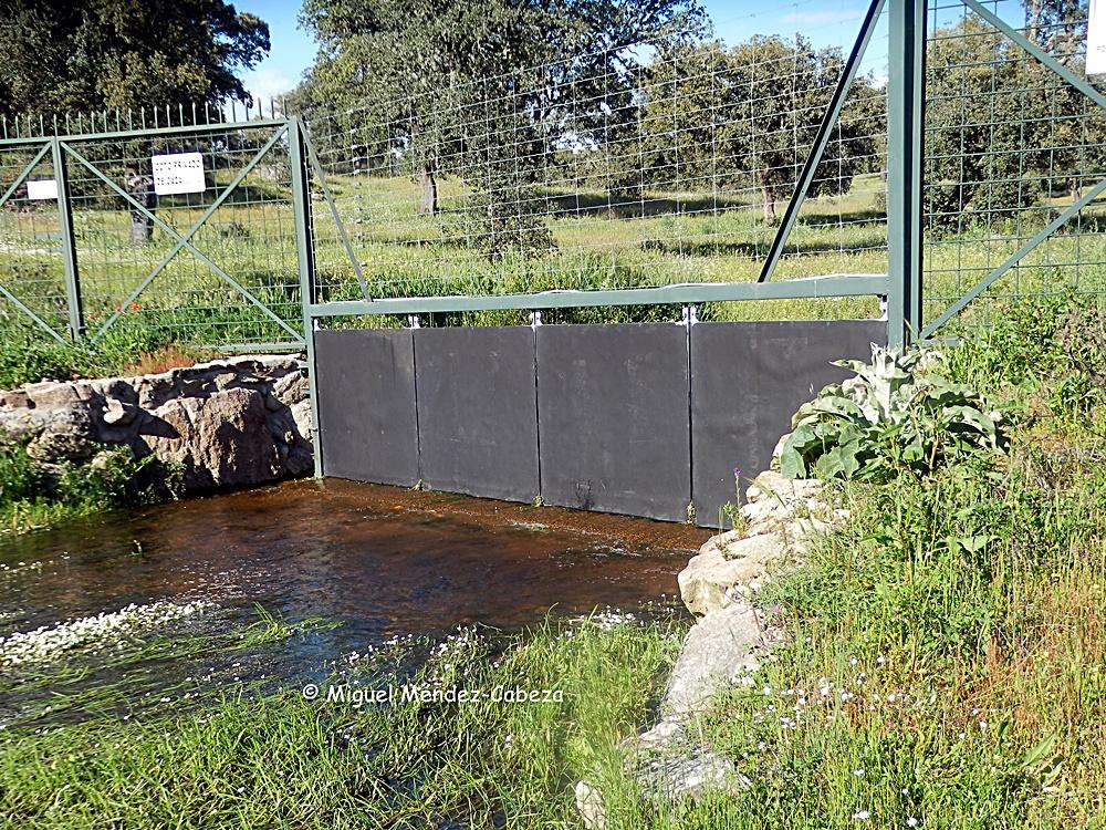 En este caso sin embargo sí que vemos habilitada una puerta lateral para el paso de servidumbre fluvial