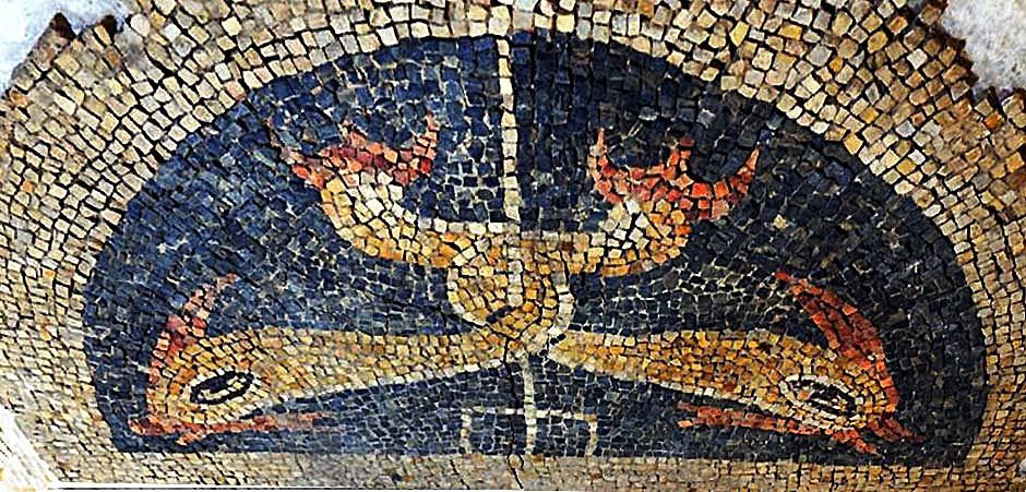 6.-Mosaico de la villa de Saucedo que representa dos delfines con las colas entreladas en un tridente