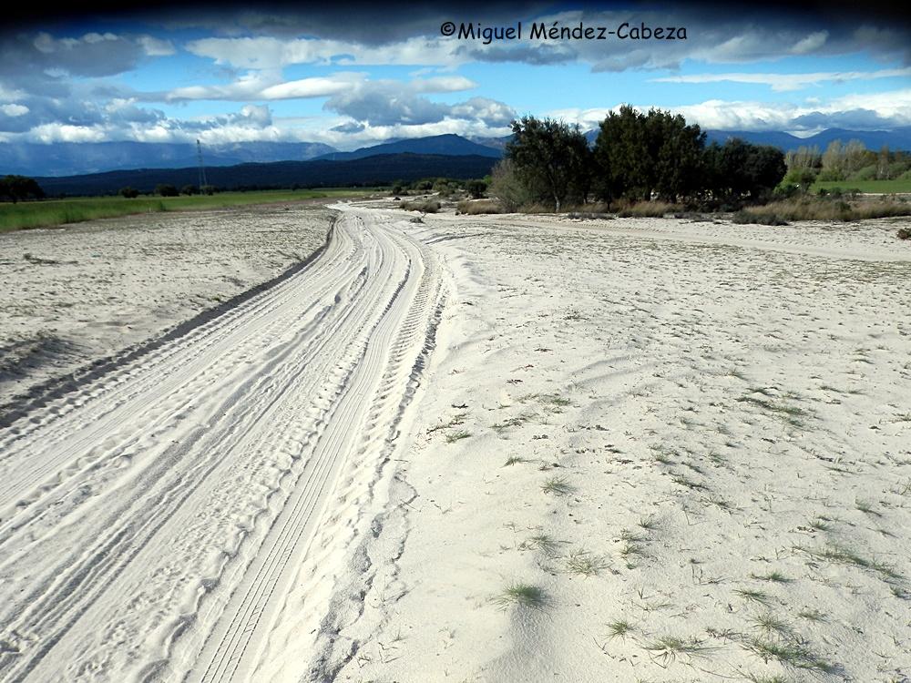 Camino sobre los arenales del Baldío de Velada