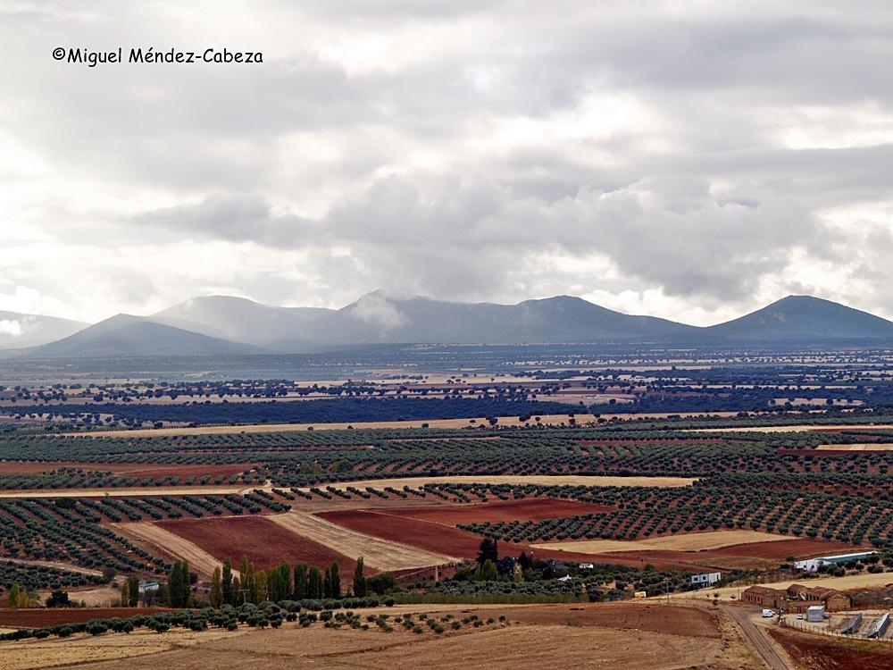 Vista desde la ermita de San Sebastián en Los navalmorales, con las rañas, olivares y sierras jareñas al fondo