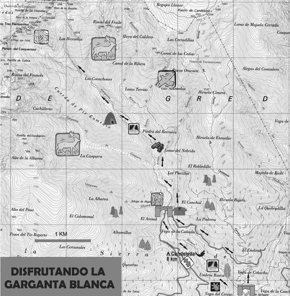 TIÉTAR 21 DISFRUTANDO LA GARGANTA BLANCA