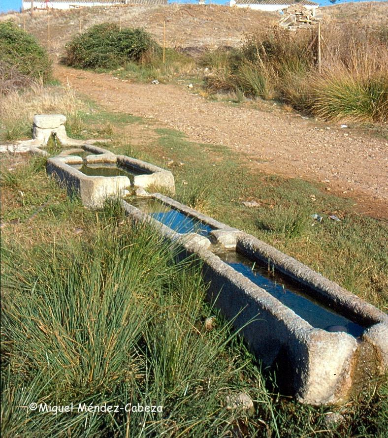 Fuente del despoblado de las Abiertas en San bartolomé