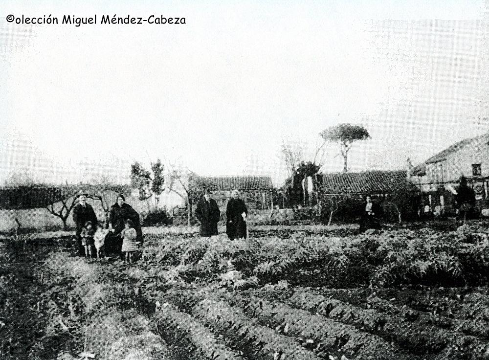 Foto de huerta talaverana a principios del siglo XX