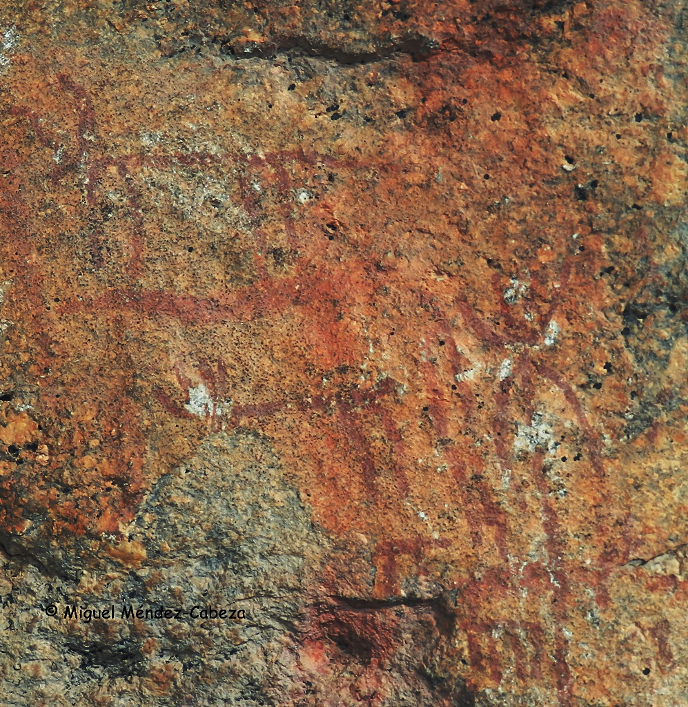 Pinturas rupestres que representan cérvidos en el valle de la garganta Tejea