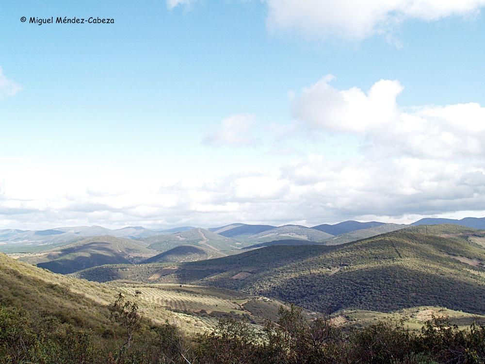 Cumbres de La Jara Alta y su monte cerrado