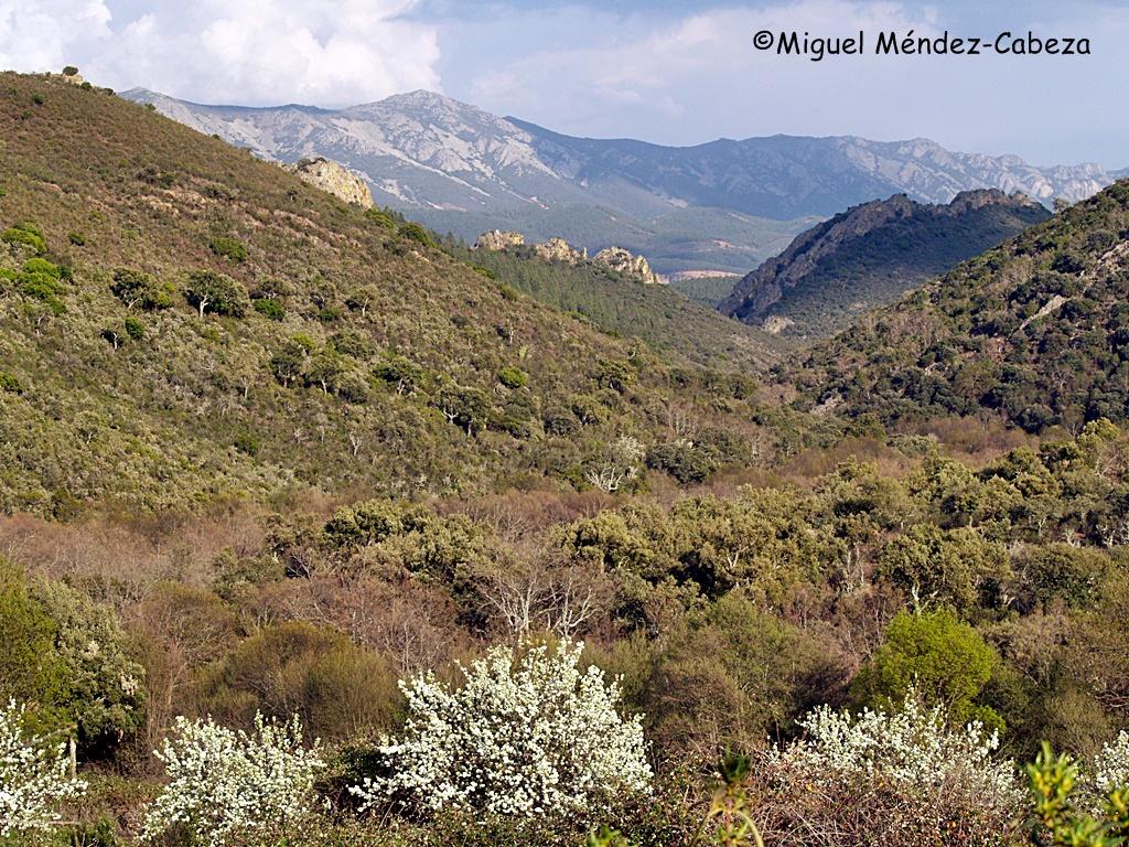 Los valles de Gualija y Guadarranques, cerca de Navatrasierra son agrestes parajes con muchos asaltos en su historia