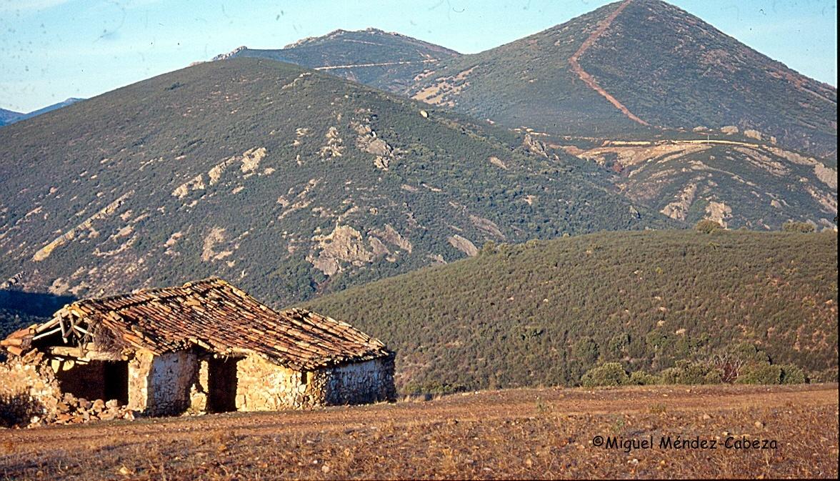 Majada en el valle alto del Pusa, en la Jara Alta