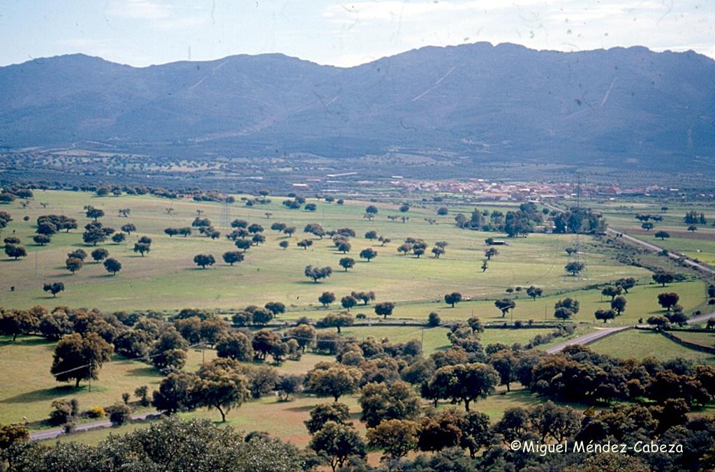 Vista de Mohedas de la Jara desde El Castrejón