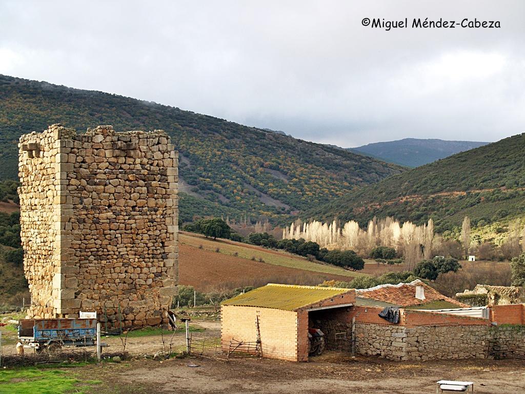 Torre de Malamoneda y al fondo chopera del río Cedena