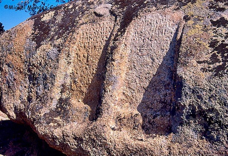 Inscripciones epigráficas funerarias labradas en la piedra en Malamoneda