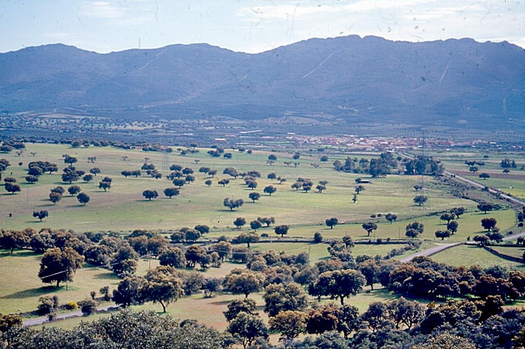 Vista desde el cerro Castrejón de las dehesas jareñas y al fondo Mohedas y las sierras de Altamira