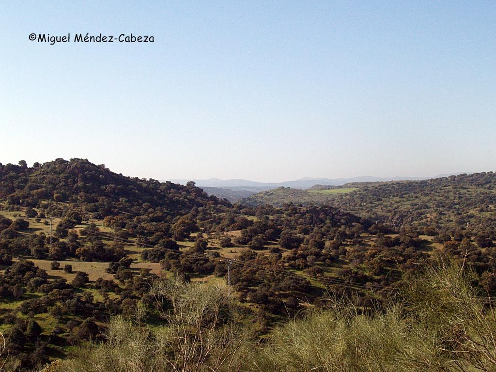 El valle del Jébalo con el yacimiento Alcaudete 1 a la izquierda