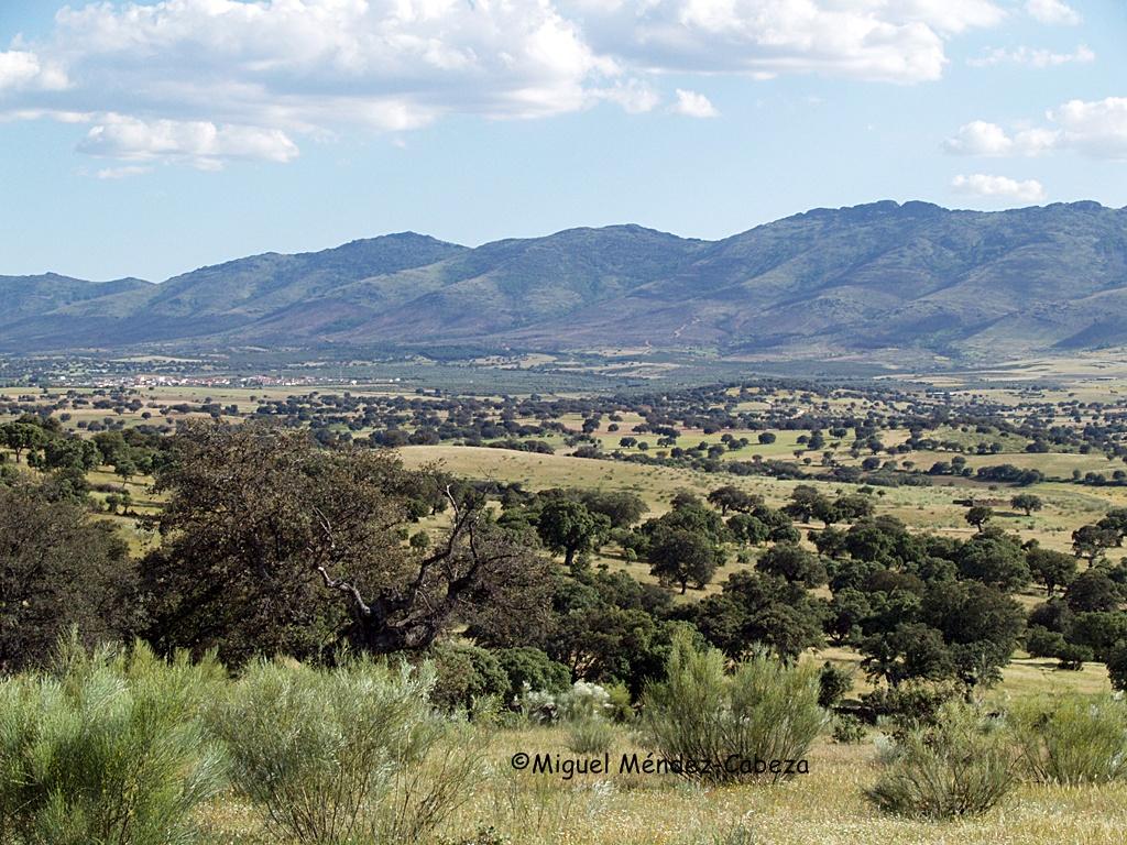 Vistas de La Jara desde el cerro Castrejón en Aldeanovita, donde se sitúa uno de los yacimientos referidos