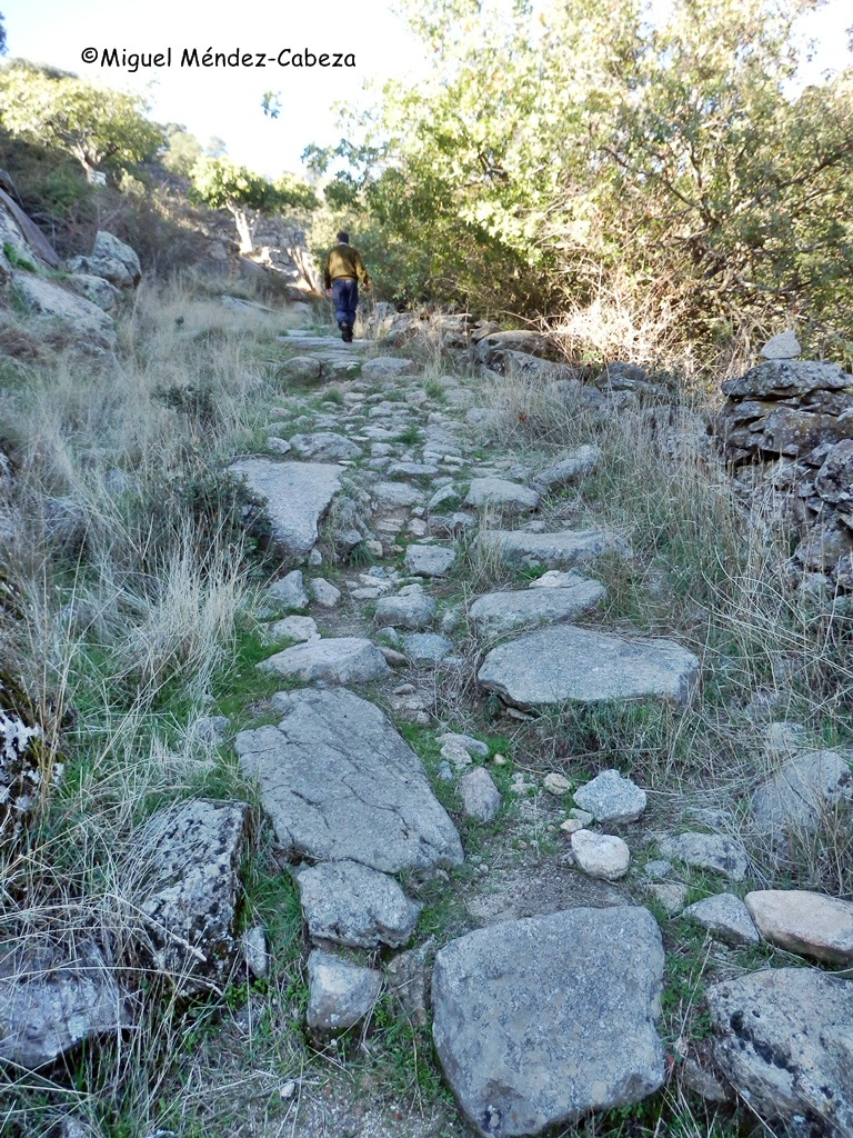 Camino de subida al cerro del Castillo