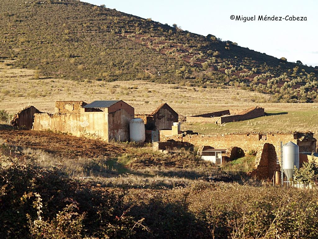 Ruinas de los edificios de La Herrera convertidos en granja