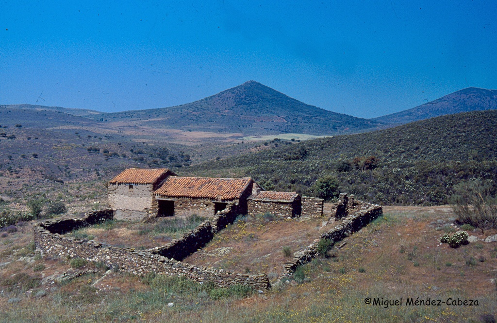 Majada en el valle del Uso y al fondo el pico de la Buha en la sierra de La Estrella