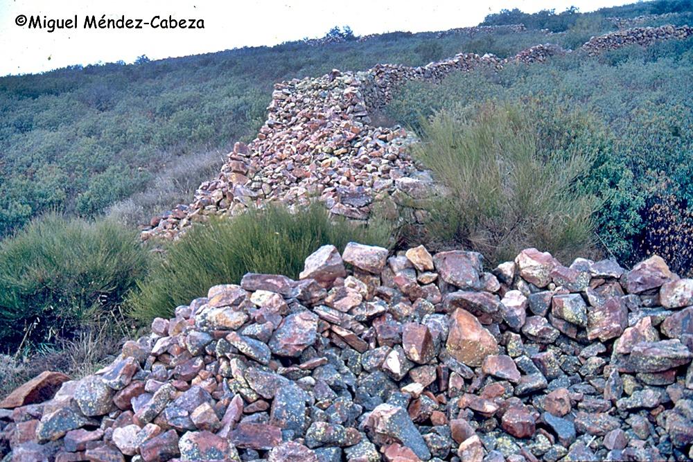 """En el interiordel propio muro de la muralla castreña de la Sierra de la Estrella hay refugios o """"moradas"""""""