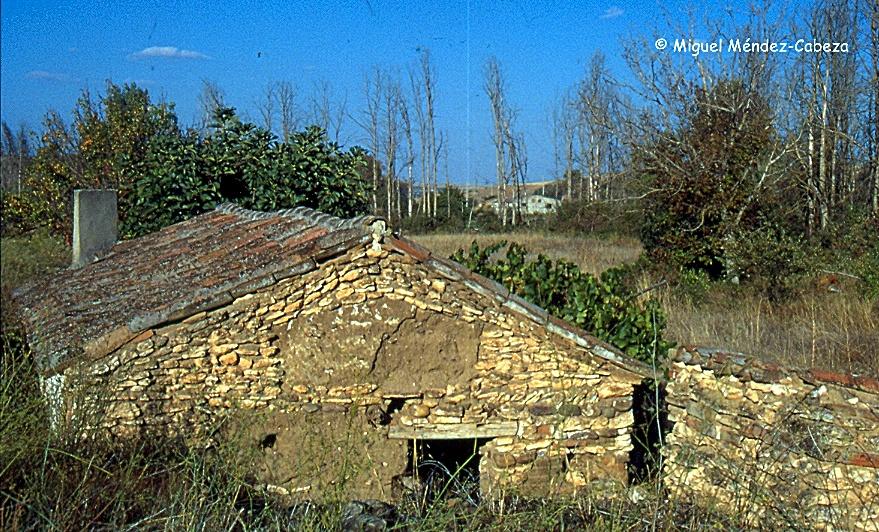 Construcción del valle de Valdevendega levantada con lentejones de caliza