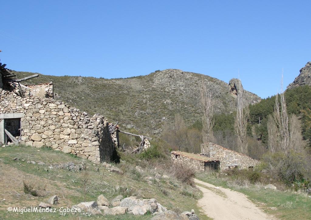 La cañada junto al Alberche camino de la Cueva del Maragato