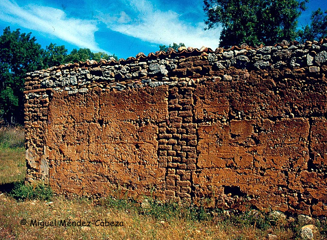 Muro de tapial con enlucido de barro y machones de adobe